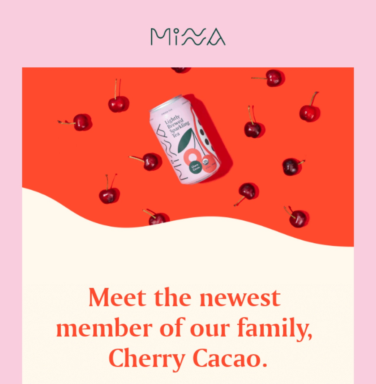 A designed email from Minna with bright colors and patterns